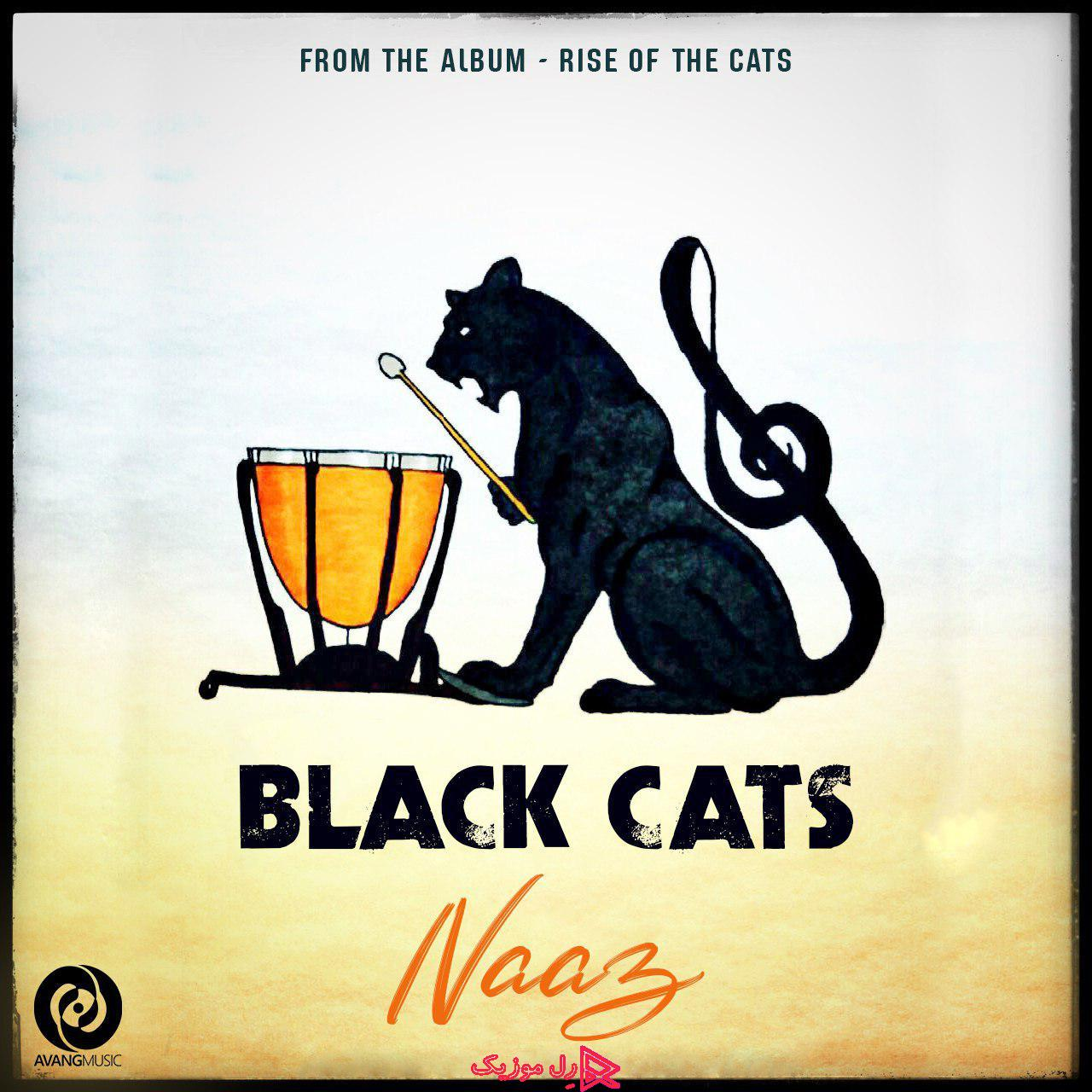 Black Cats Naaz RellMusic - دانلود آهنگ بلک کتس به نام ناز
