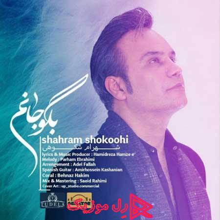 Shahram Shokoohi Begoo Janam RellMusic - دانلود آهنگ شهرام شکوهی بگو جانم